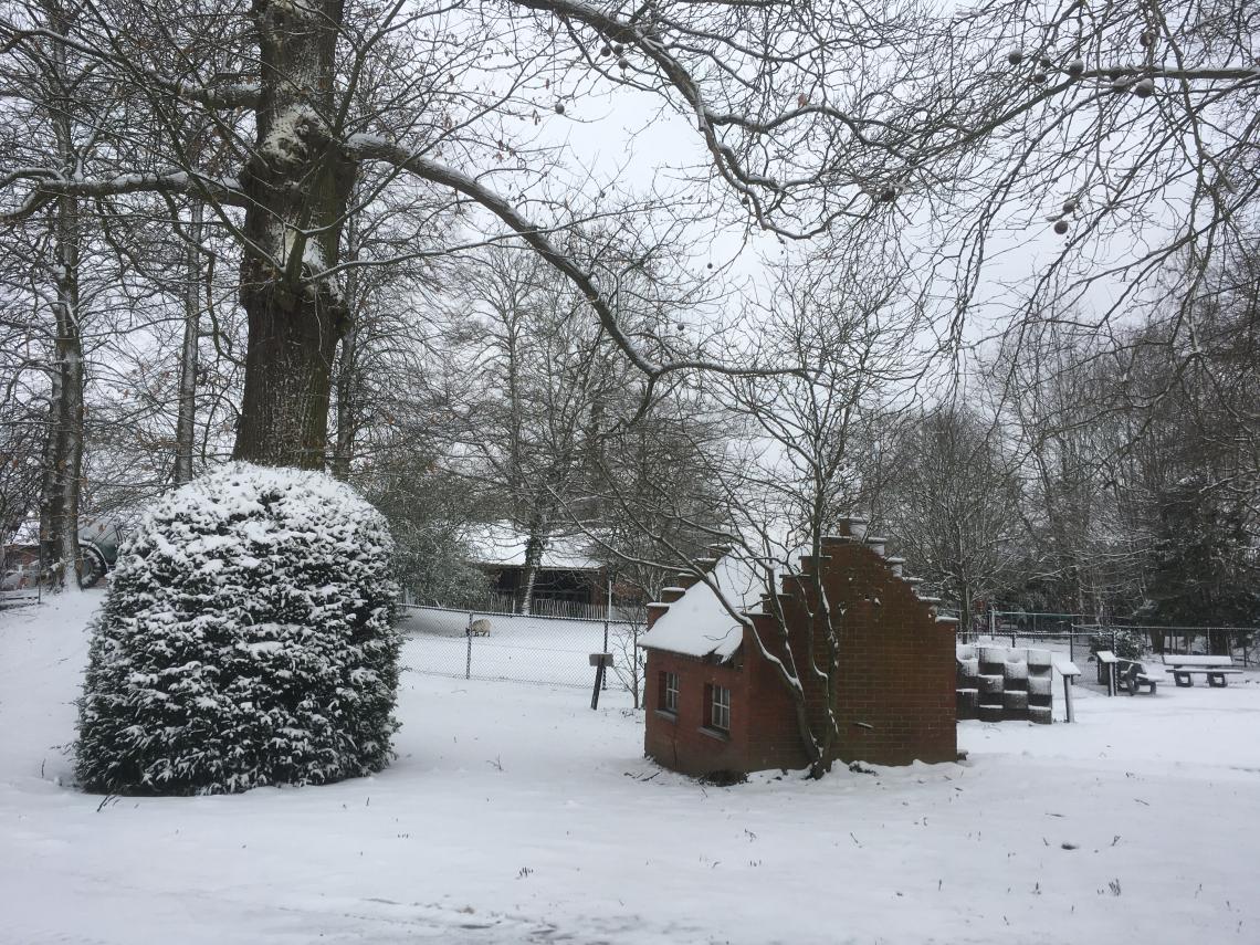Winters sneeuwtapijt