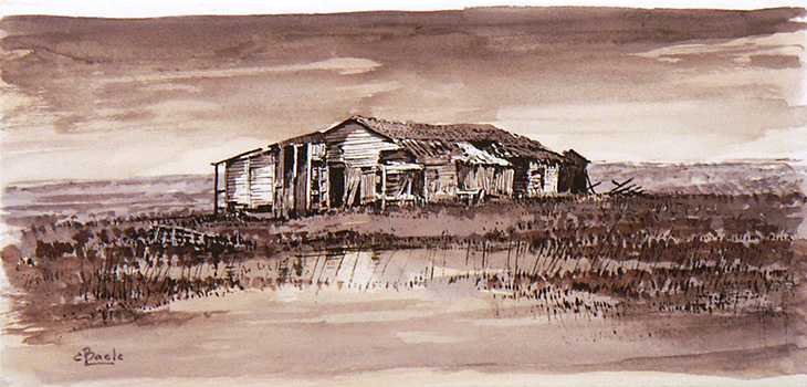 Stan Baele (kunstschilder) - Schaapskooi in Saeftinghe