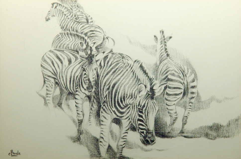 Stan Baele (kunstschilder) - Zebra's