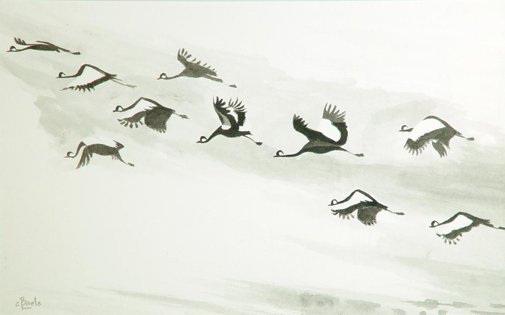 Stan Baele (kunstschilder) - Trekkende Kraanvogels