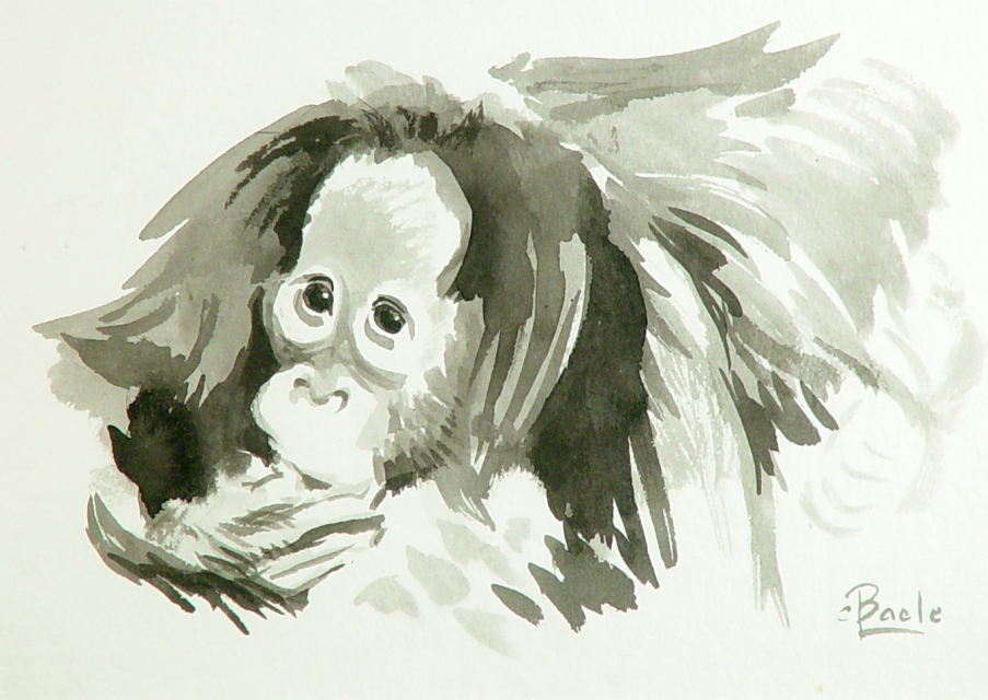 Stan Baele (kunstschilder) - Jonge Orang
