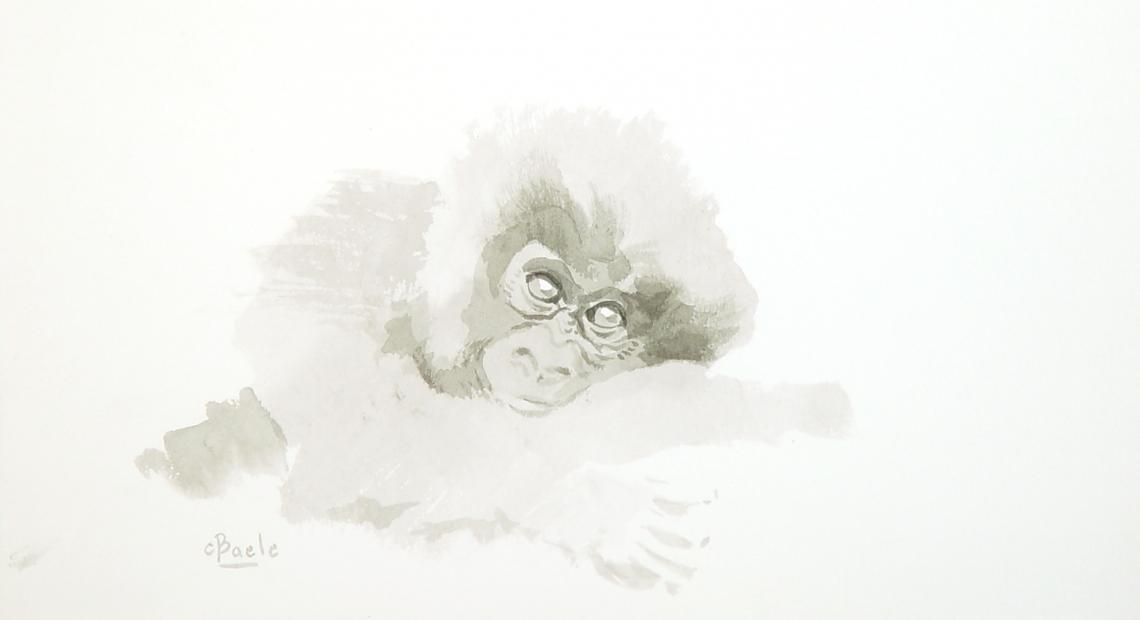 Stan Baele (kunstschilder) - Jonge Gorilla