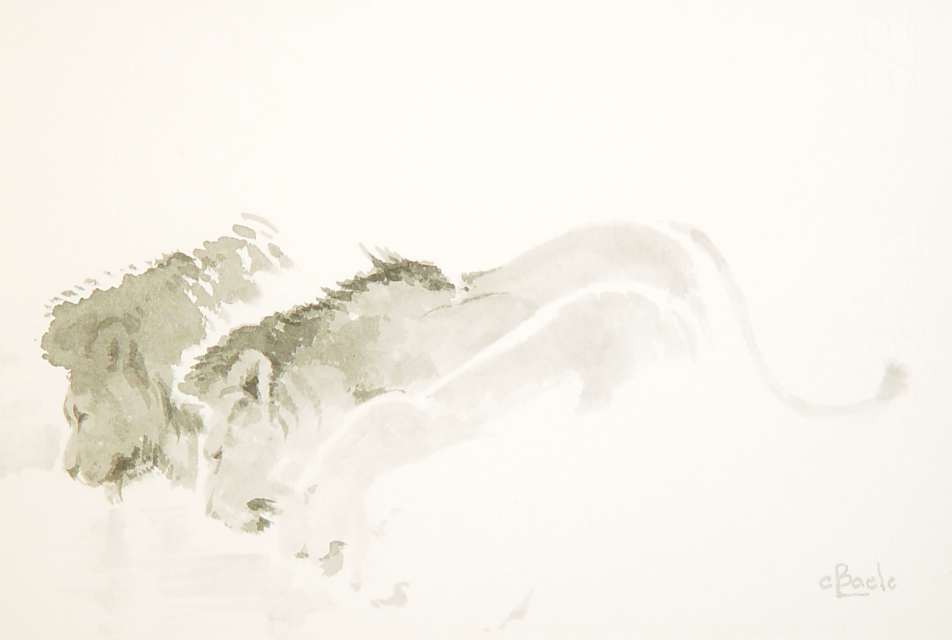 Stan Baele (kunstschilder) - Drinkende Leeuwen