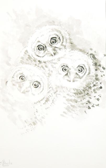 Stan Baele (kunstschilder) - Drie Jonge Uiltjes