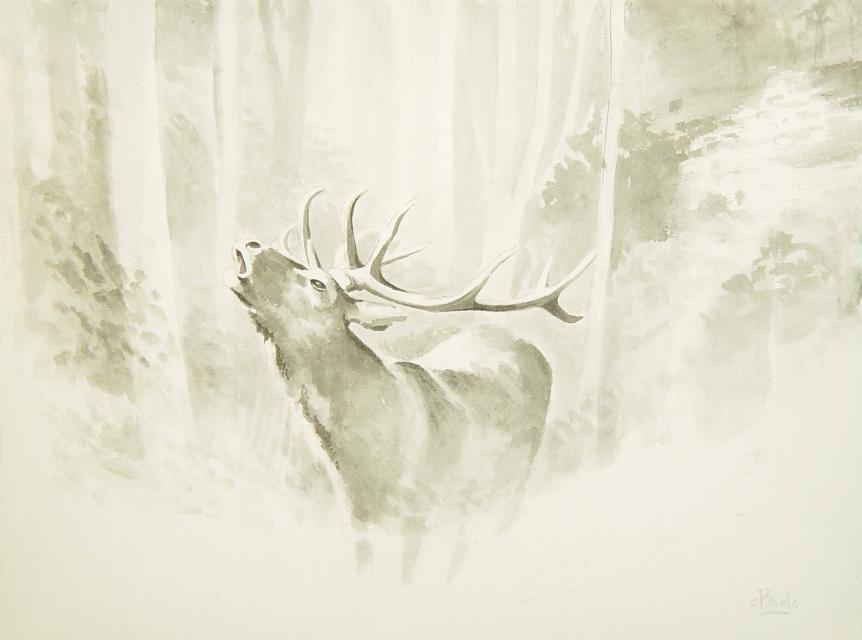 Stan Baele (kunstschilder) - Edelhert (Br)