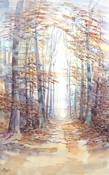 Stan Baele (kunstschilder) - Woudpad