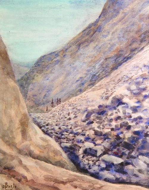 Stan Baele (kunstschilder) - Negev Woestijn