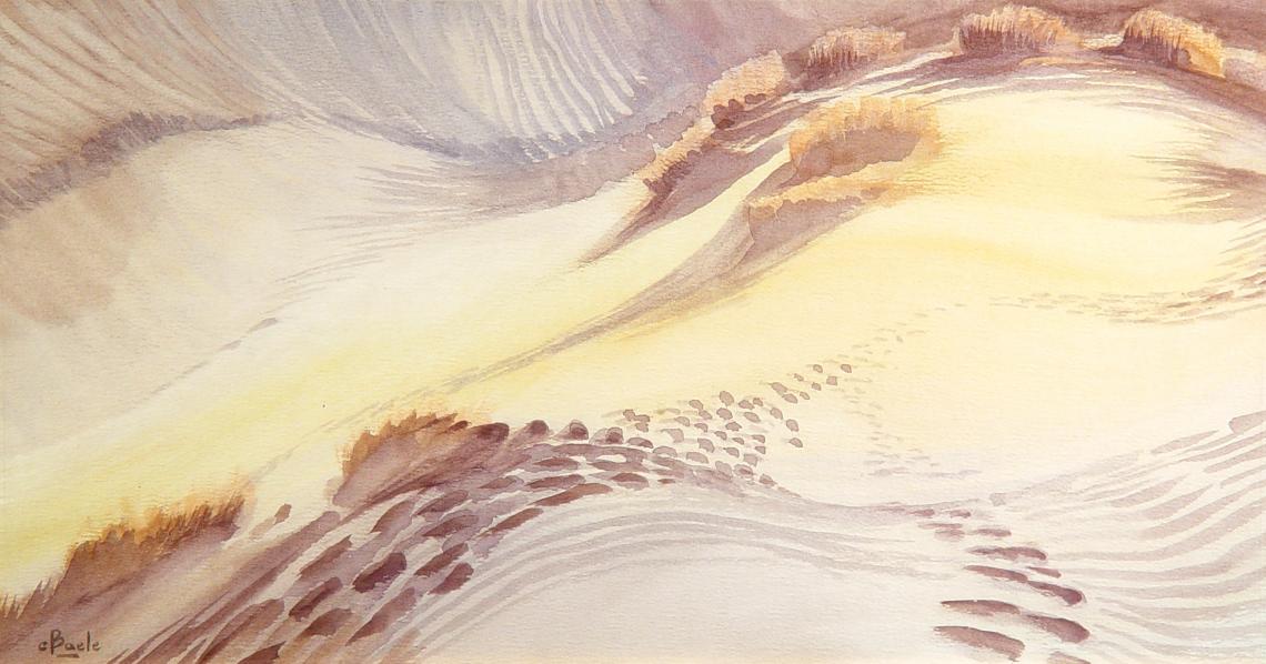 Stan Baele (kunstschilder) - Zandwoestijn