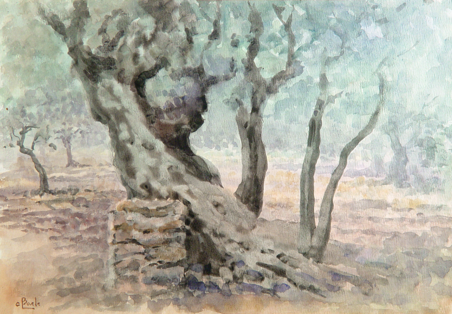Stan Baele (kunstschilder) - Olijfgaarde