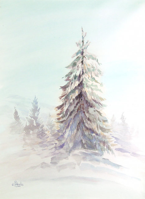 Stan Baele (kunstschilder) - Sparren in de Sneeuw