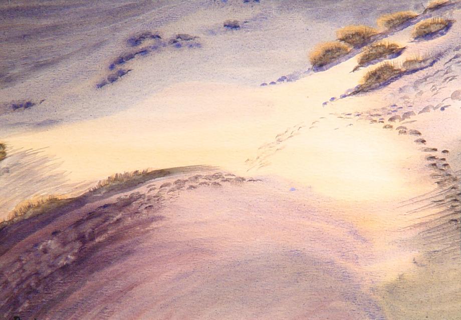 Stan Baele (kunstschilder) - Sporen in het Zand