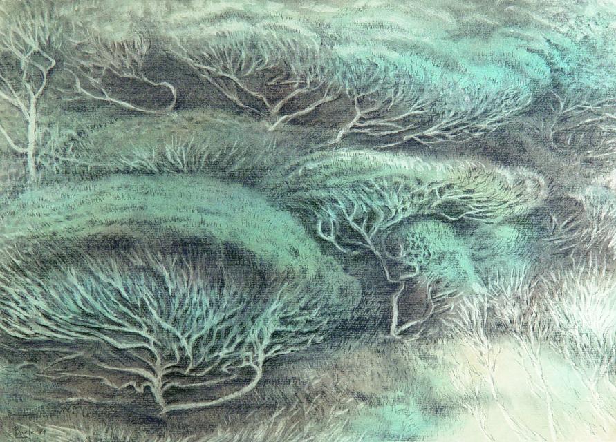Groene Longaders van het Oerwoud