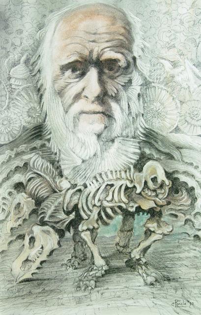 Stan Baele (kunstschilder) - Darwin