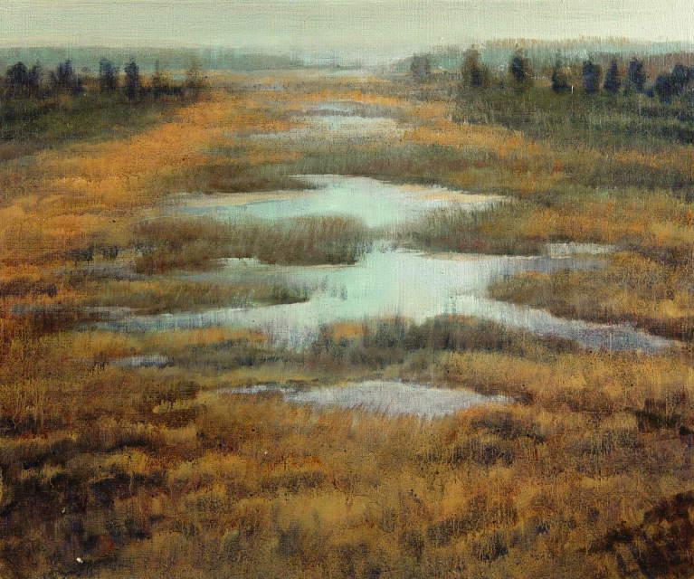 Stan Baele (kunstschilder) - Heidelandschap