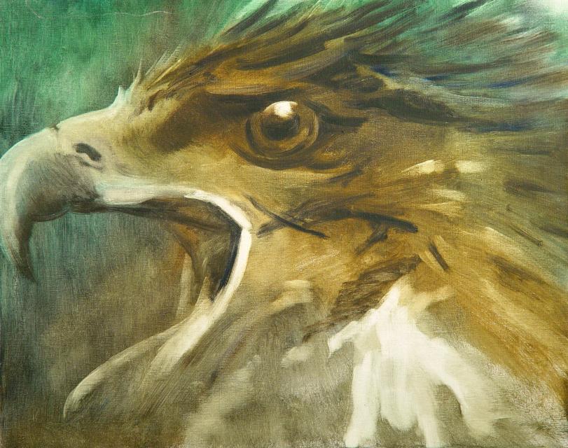 Stan Baele (kunstschilder) - Arendskop