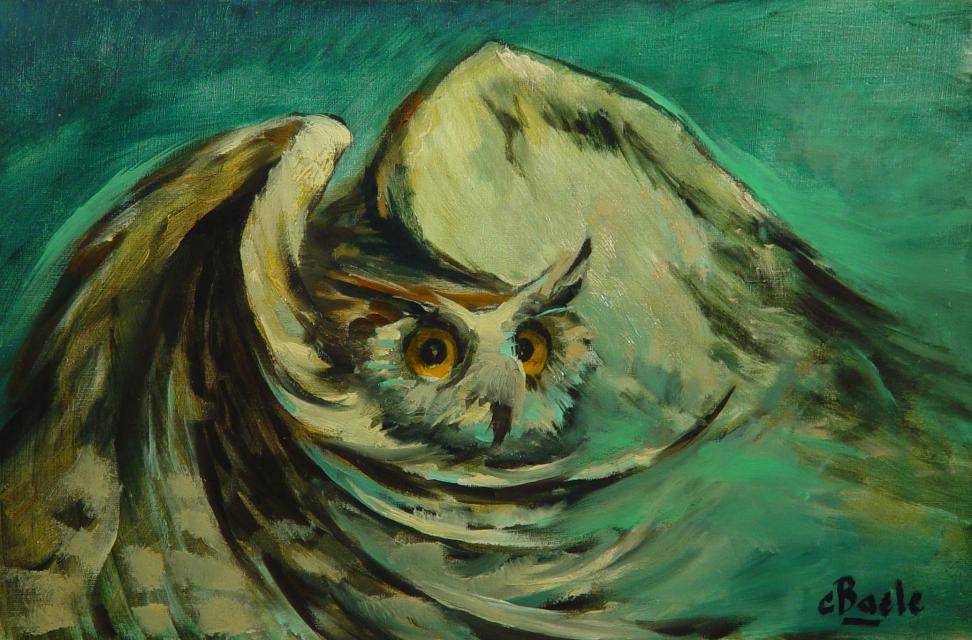 Stan Baele (kunstschilder) - Nachtvlucht