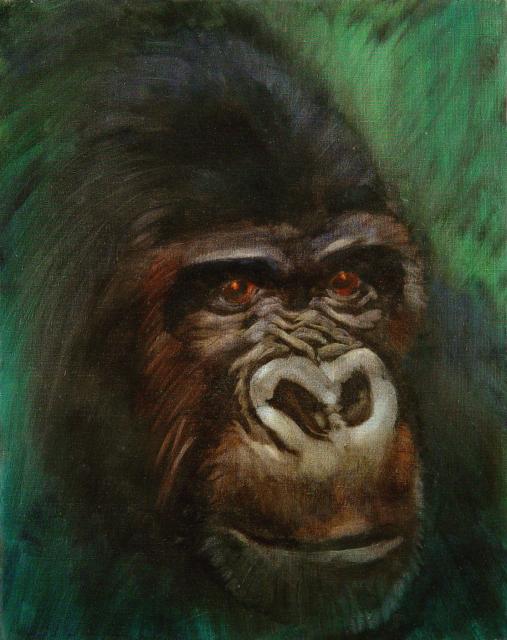 Stan Baele (kunstschilder) - Gorilla