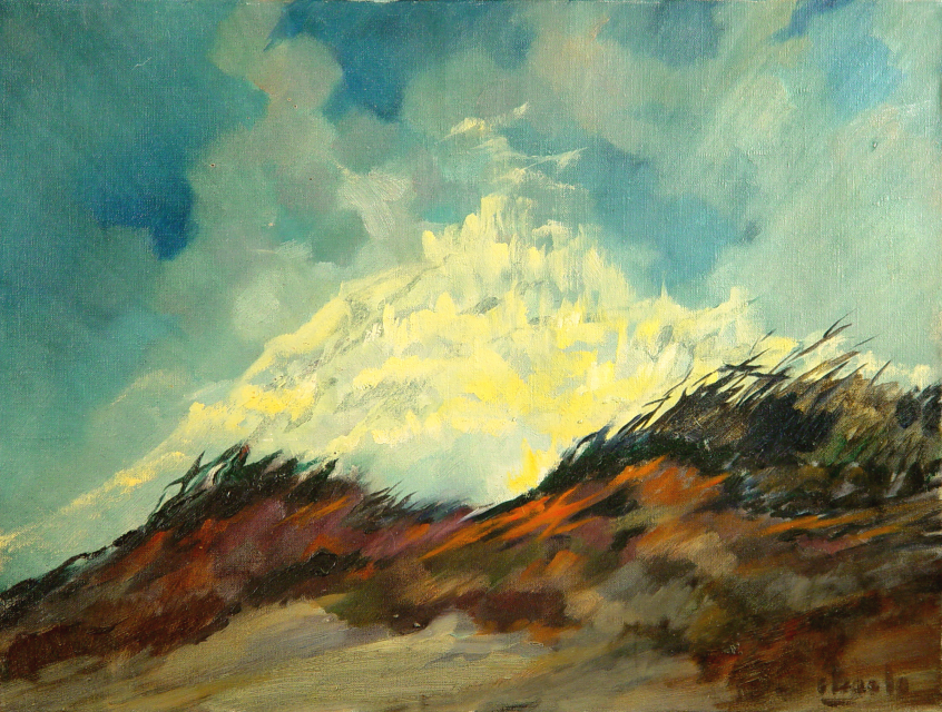 Stan Baele (kunstschilder) - Heidereservaat