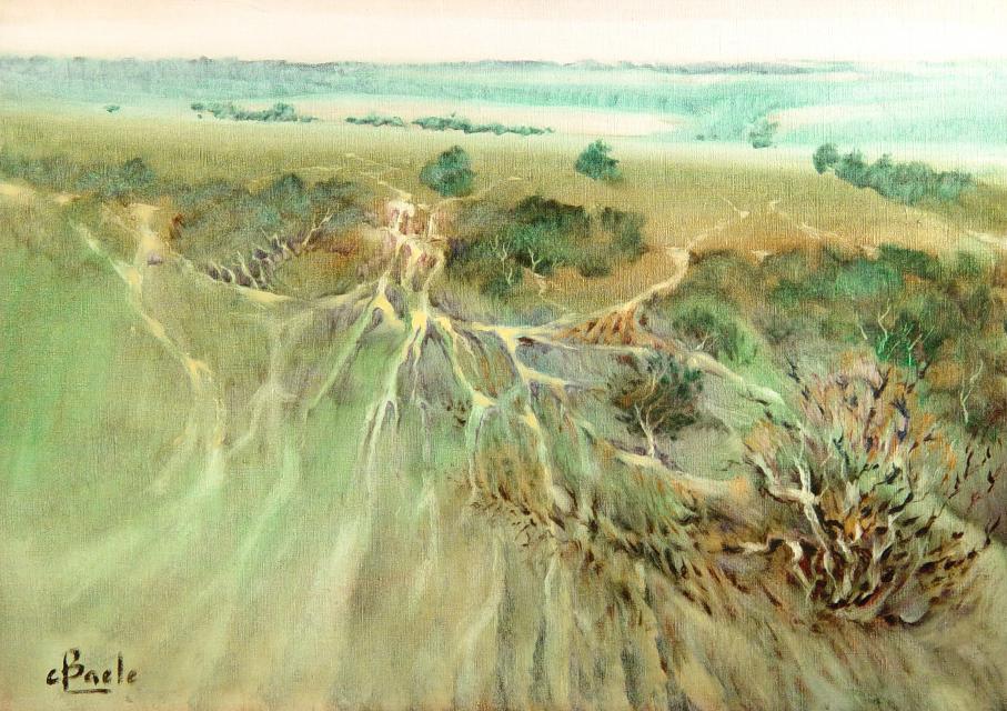 Stan Baele (kunstschilder) - Hautes Fagnes