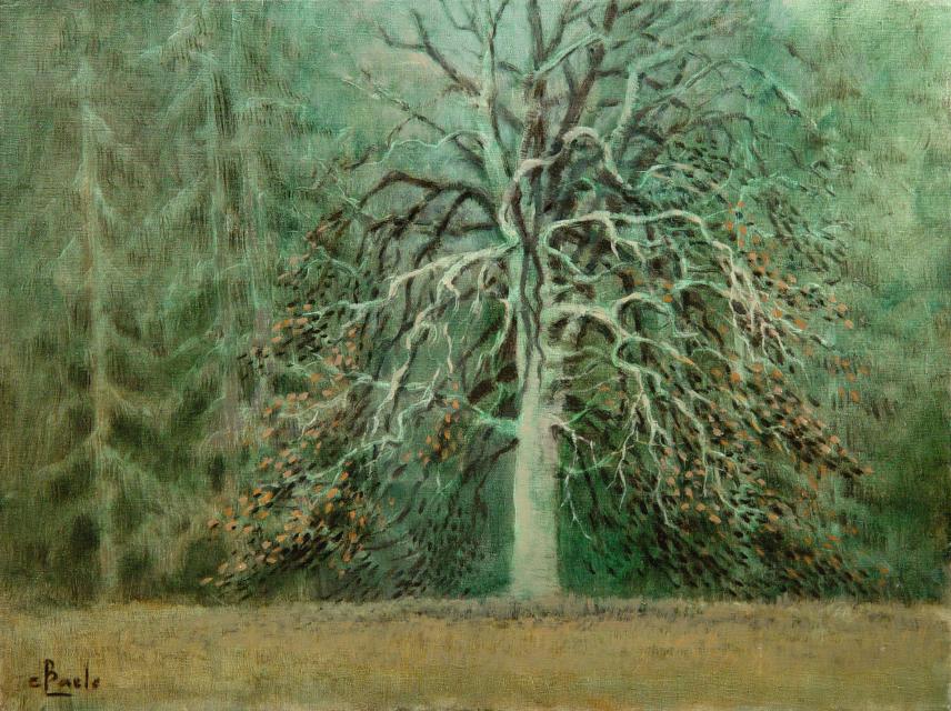 Stan Baele (kunstschilder) - Oude Beuk