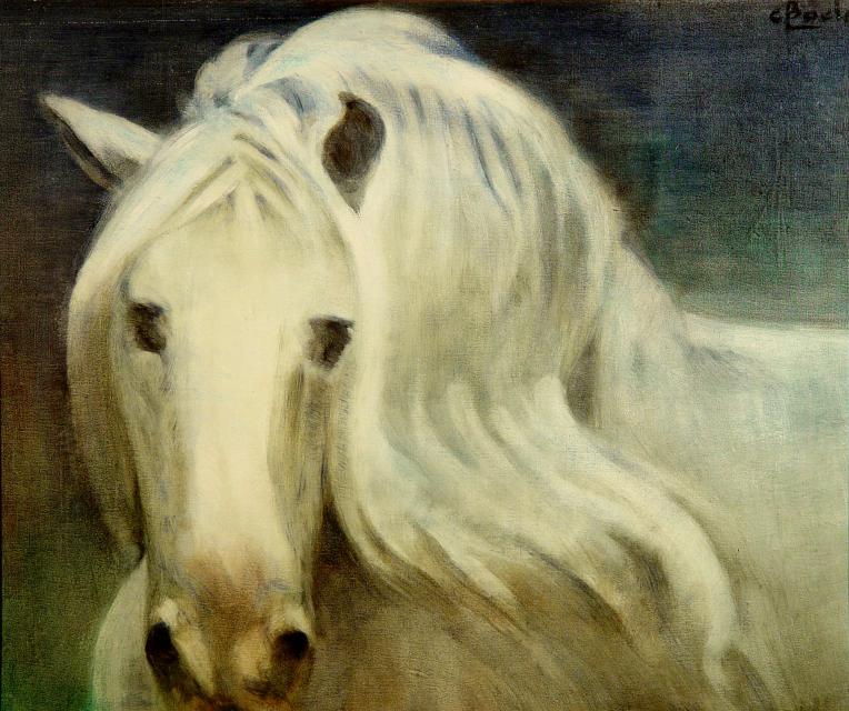 Stan Baele (kunstschilder) - Melancholisch Wit Paard