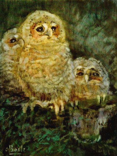 Stan Baele (kunstschilder) - Jonge Uilen