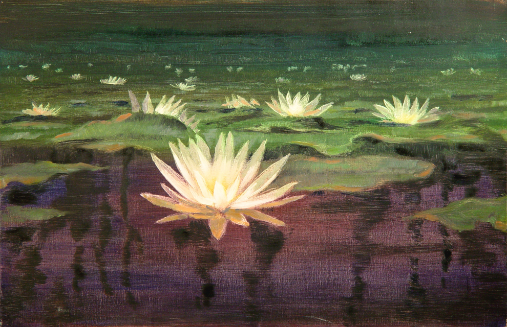 Stan Baele (kunstschilder) - Waterlelies