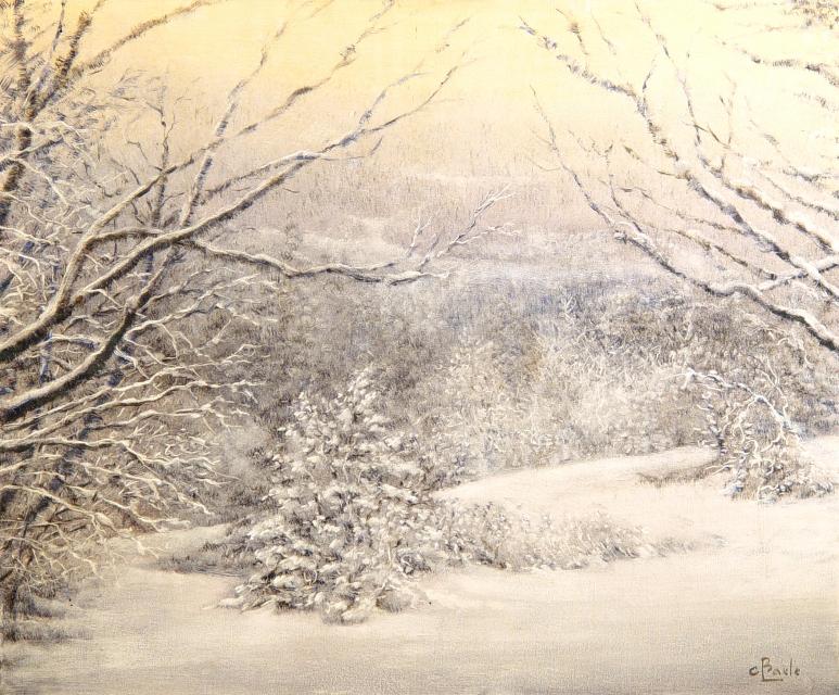 Stan Baele (kunstschilder) - Sneeuw in St. Hubert